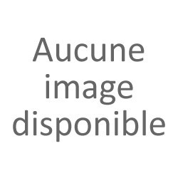 André Malraux : une passion - Anissa Benzakour-Chami